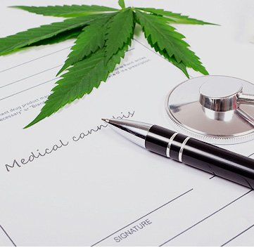 Florida Marijuana Doctors